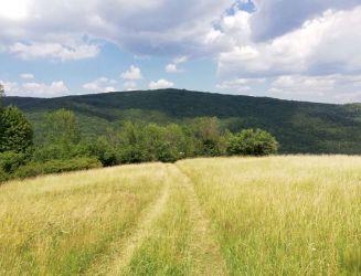 Horný Tisovník – pozemok vhodný pre chalupu – 1.3 ha – predaj