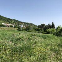 Rekreačný pozemok, Vinné, 3775 m²