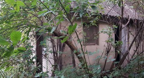 Predám pozemok so starším rodinným domom v obci Mužla.