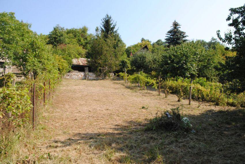 Predaj vinice, chmelnice Šahy-2
