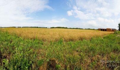 APEX ponúka stavebný pozemok Č.03. v príjemnej štvrti v Jaslovských Bohuniciach, slnečný, 1020 m2, IS