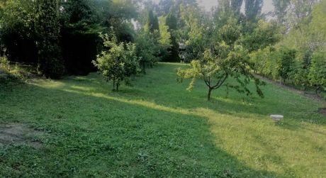 Predaj - záhrada pri mŕtvom ramene bez LV, v Komárne