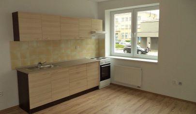 PARTIZÁNSKE 2 izbový byt po rekonštrukcii  44m2, vyvýšené prízemie/F1