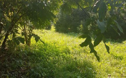 Predáme 1716m2 pozemok s rekreačnou chatou za vynikajúcu cenu v Maďarskom Bezenye len 15 km od Brati