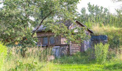 Záhrada (339 m2) Brusnik Sp. Nová Ves