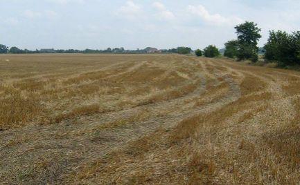 Orná pôda ako investičný pozemok v Čukárskej Pake