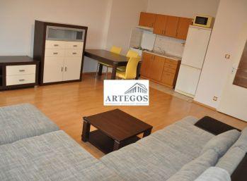 1 izb byt v peknej lakoalite