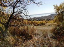 Pozemok pre chatu  na  Z.Šírave - nad Viňankou