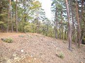 REALITY COMFORT - krásny stavebný pozemok pri lese v Bojniciach - TICHÉ PROSTREDIE