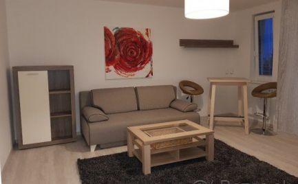Na prenájom dva pekné 1 izbové byty Trnavská cesta Ružinov