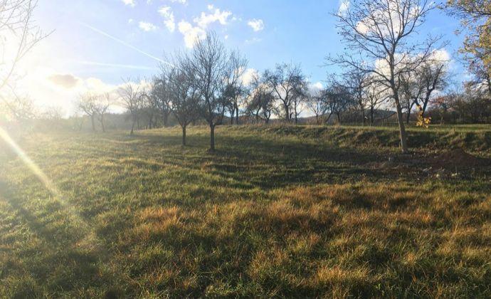 ZNÍŽENÁ CENA - Veľký slnečný pozemok pod lesom - Nitrianske Sučany