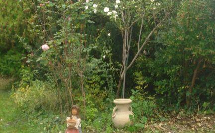 Celoročne obývateľný, útulný rodinný domček v Šamoríne