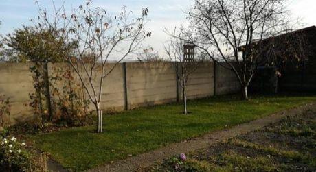 Kuchárek-real: Záhrada so záhradnou chatkou v Pezinku.