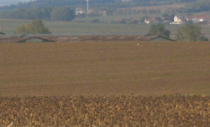 EXKLUZIVNE !..19,97 árový pozemok v obci Lužianky, časť Holotka