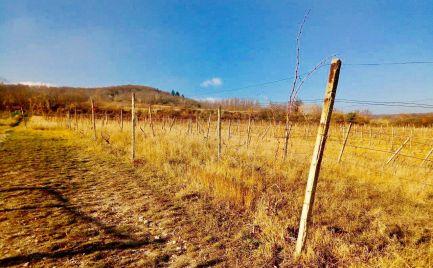 Investičný  pozemok  941 m2  Rača - Vtáčikova cesta