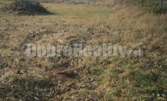 Exkluzivne! pozemok   o výmere 7,69 ára v obci Lužianky