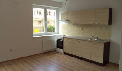 REZERVOVANÉ  PARTIZÁNSKE 2 izbový byt po rekonštrukcii. 48m2, vyvýšené prízemie