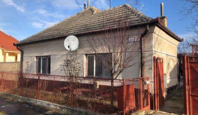 Rodinný Dom s veľkým a širokým pozemkom , Palárikovo