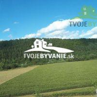 Poľnohospodárska pôda, Chminianska Nová Ves, 41506 m²