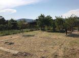 Záhrada v BA na Žabom majeri, 318 m2