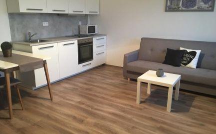 Prenájom 1 izbový byt s balkónom,  Pekná cesta, Bratislava Krasňany
