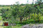 Realitná kancelária SA REALITY ponúka na predaj slivkový sad, lokalita Levice