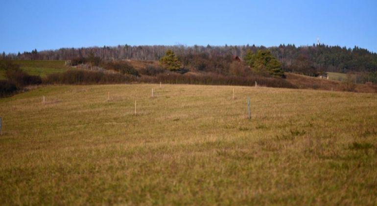 Predaj slnečných pozemkov v Ovčiarsku pri Žiline