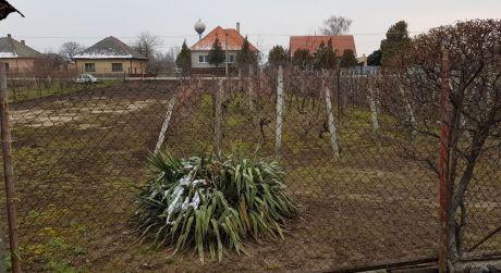 Pozemok v obci Búč. ZNÍŽENÁ CENA.