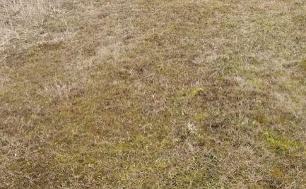 Pozemok vhodný pre záhradku alebo na rekreáciu, Žilina - Bytčica 720 m2