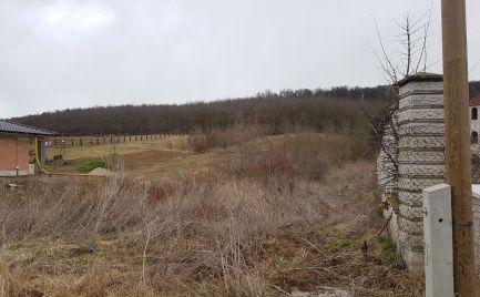 Obrovský pozemok s kúskom lesa