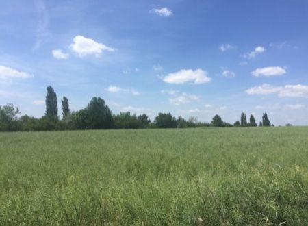 Pôdu o výmere 2857 m2 - extravilán, Melčice - lieskové
