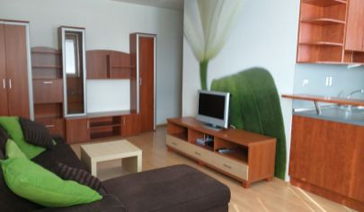 PRENÁJOM útulný 2-izb. byt Dolné Hony , Podunajské Biskupice