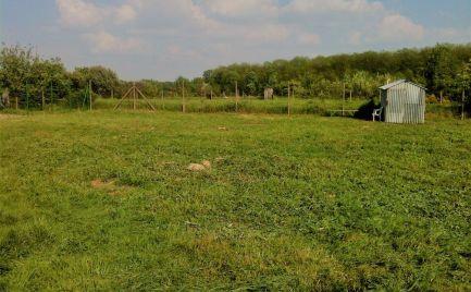 Predaj - pozemok Čunovo