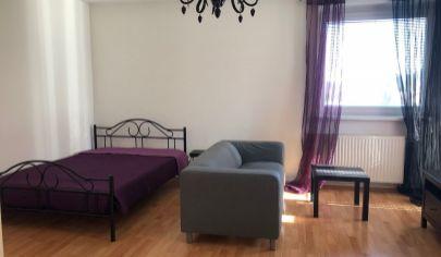1 izbový zariadený byt, Nitra - Čermáň