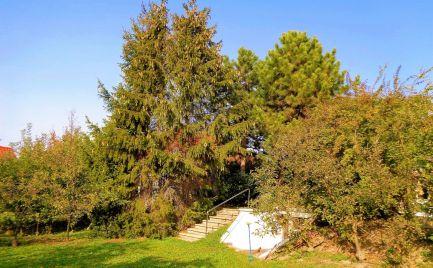 PREDÁME rodinný dom s veľkou záhradou a bazénom