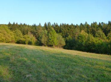 Pozemok Udiča - Prosné, Orná pôda 10 000 m2 - Investičná príležitosť