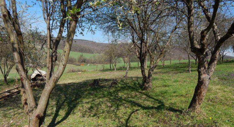 Pozemok na predaj Horná Ves 4023 m2, okres Prievidza