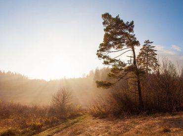 Lukratívny pozemok blízko jazera v rekreačnej oblasti Krpáčovo, 1439 m2