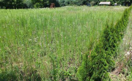 Rozsiahly pozemok na brehu rieky Nitra v tichom prostredí Zúgova