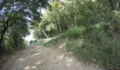 Ponúkame na predaj krásny pozemok v Borinke, priamo pod hradom Pajštún, 1076m2