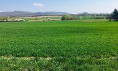 Stavebný pozemok 1.000m2 okres Michalovce