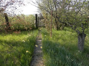 REZERVOVANÉ! PRENÁJOM - záhrada na Žabom majeri