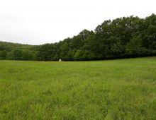 Na predaj rozľahlý pozemok 6166 m2 vo výbornej a tichej lokalite, obec STUPAVA. VHODNÝ ako INEVESTÍCIA.