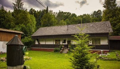 Holiday house / Cottage for sale in nature in Slovakia, Trenčín region