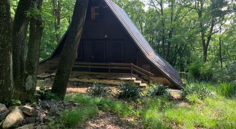 Ponúkame na predaj útulnú chatu v krásnom lesnom prostredí v Pezinku ,v rekreačnej oblasti  Kučišdorfská dolina.