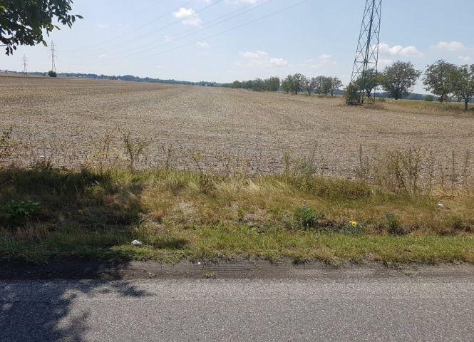 poľnohospodárska pôda - Kráľová pri Senci - Fotografia 1