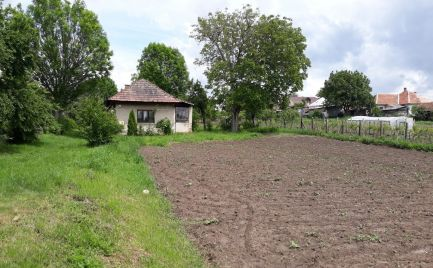 Predaj udržiavaného pozemku bez priamych susedov, Dedinka
