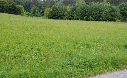 Pozemok v Obci Baláže pri Banskej Bystrici (možnosť výstavby RD alebo rekreačnej chaty)
