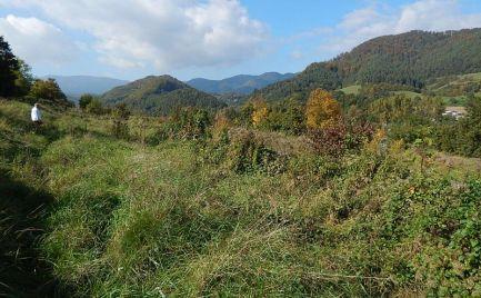 Pozemky v Skubíne na predaj (Banská Bystrica)