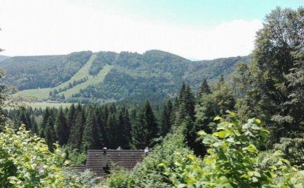 Na predaj lesné pozemky na Táľoch (Nízke Tatry)